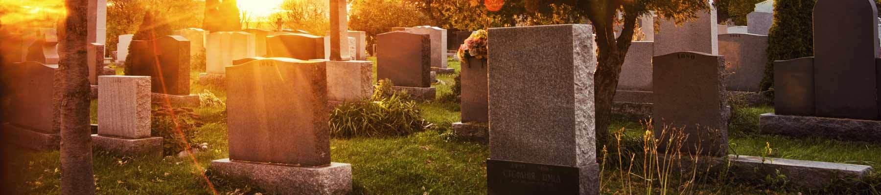 What Are My Burial Options?