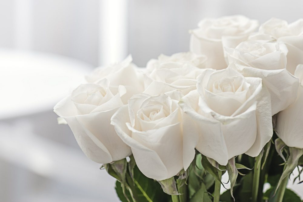 White Roses Meaning Death
