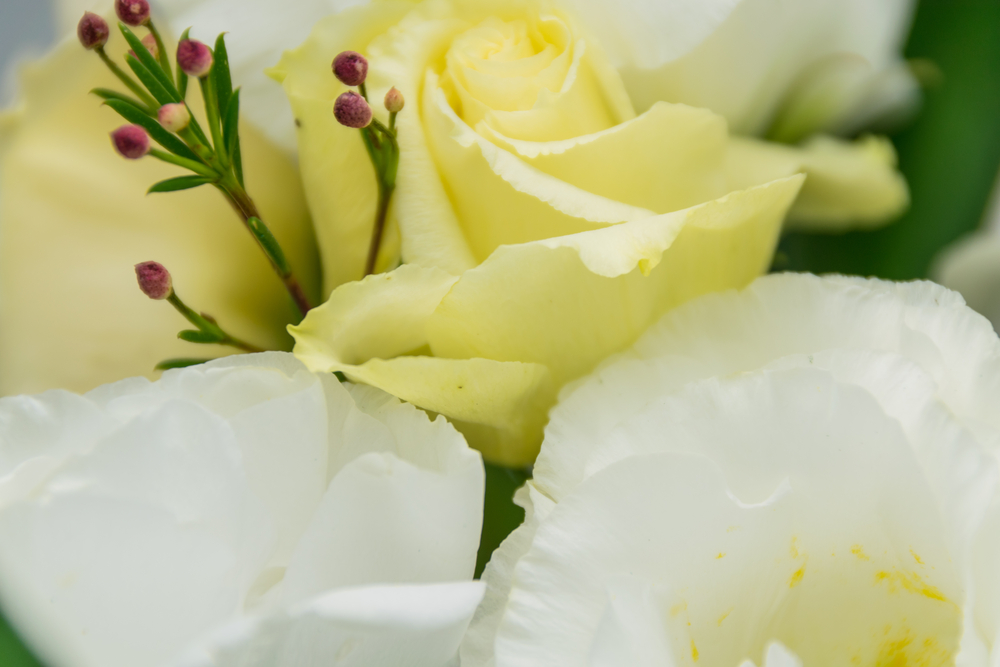 9 Funeral Costs That Are Often Overlooked