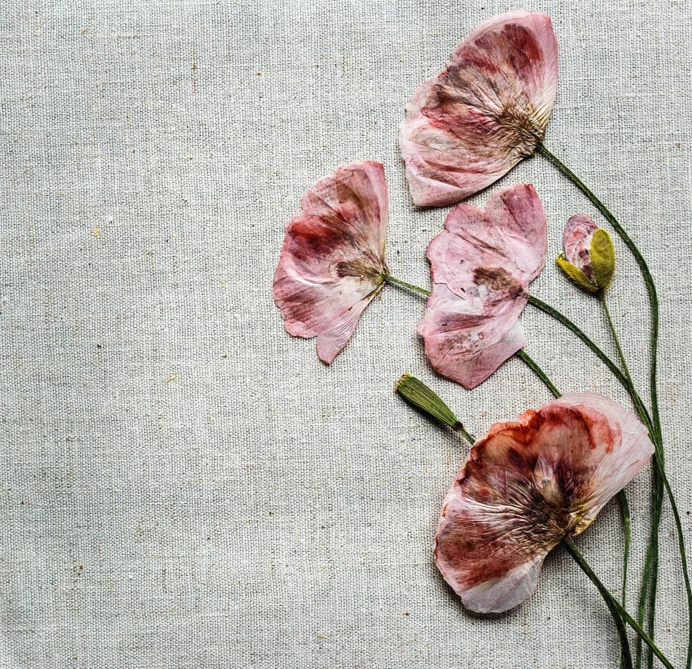 Creating Memorial Keepsakes with Funeral Flowers
