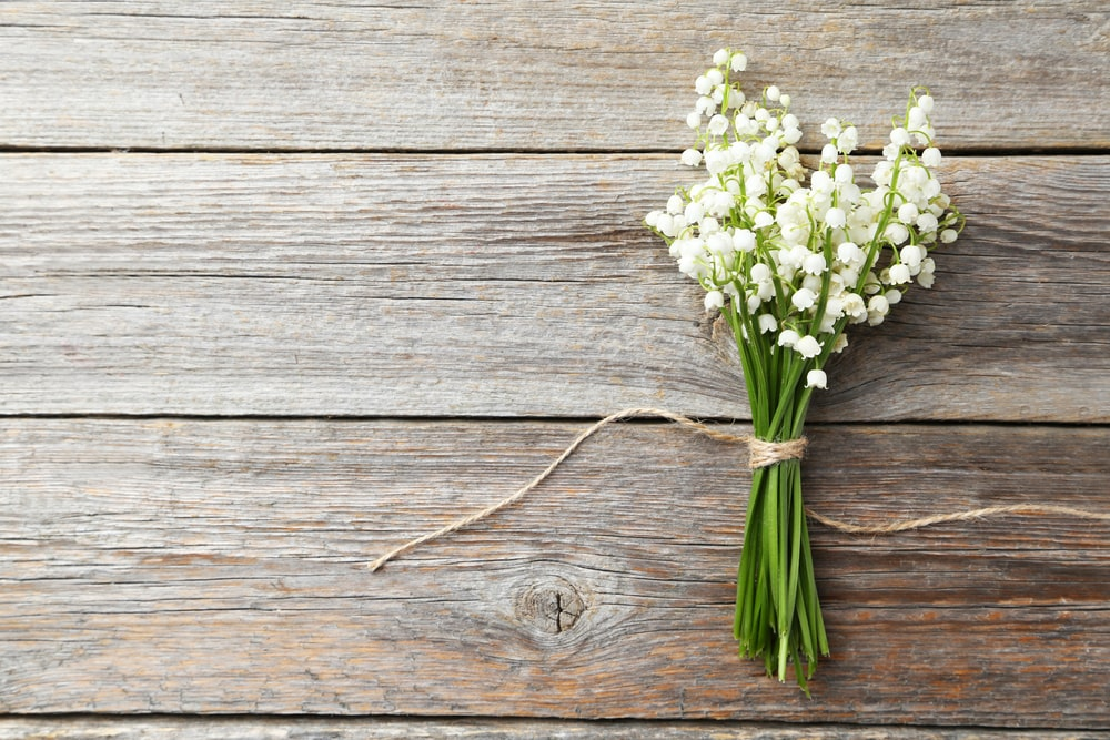 How Funerals Help Us Accept the Reality of Death
