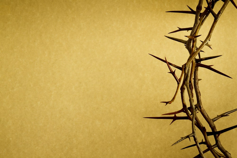 Easter Meditations for the Grieving Heart