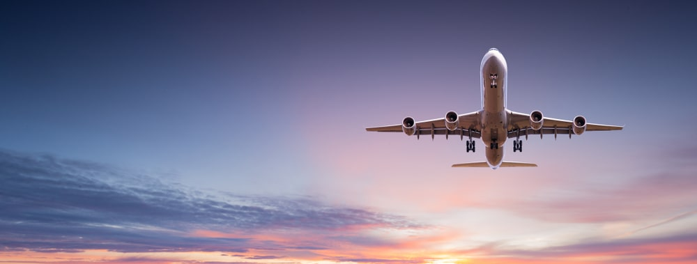 What You Need to Know About Flying with Cremated Remains